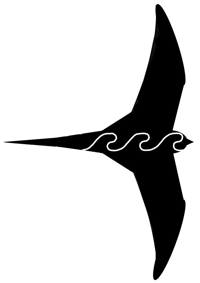 PT Watwercraft's PT11 sail insignia is a Pacific Swift silhouette